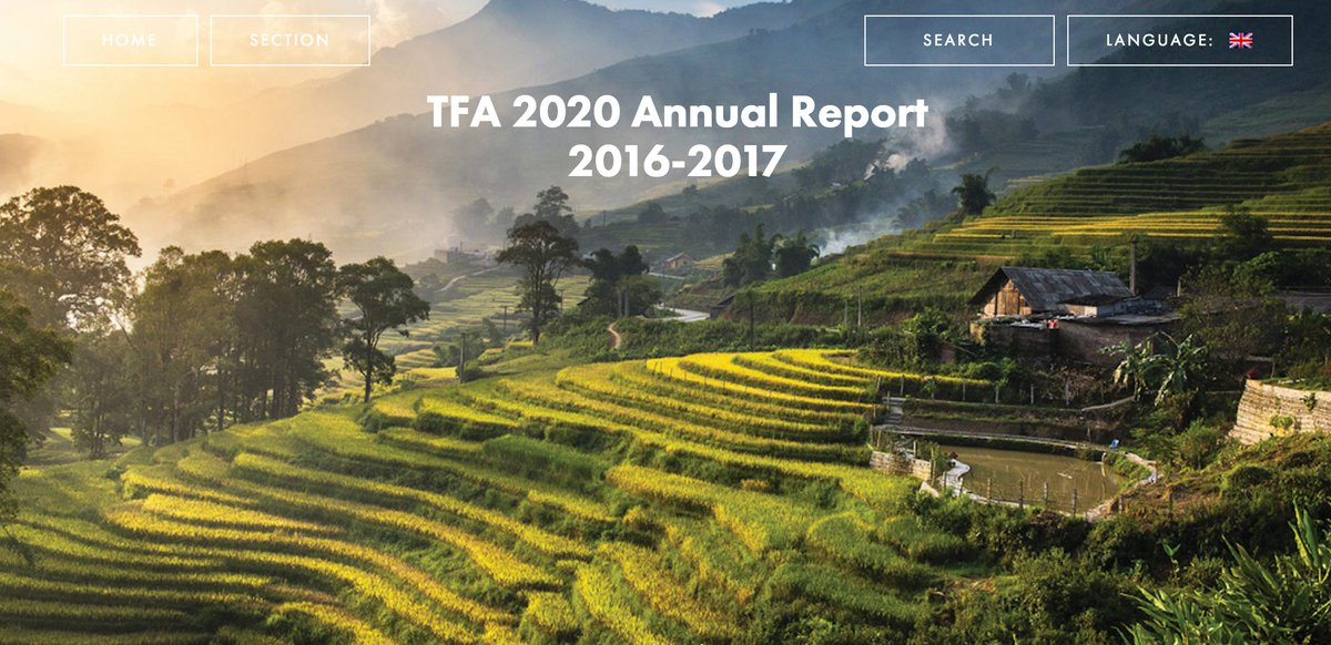 3 TFA 2020.jpg