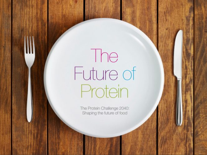 Agroicone recomenda: The Protein Challenge 2040 report by Forum for the Future