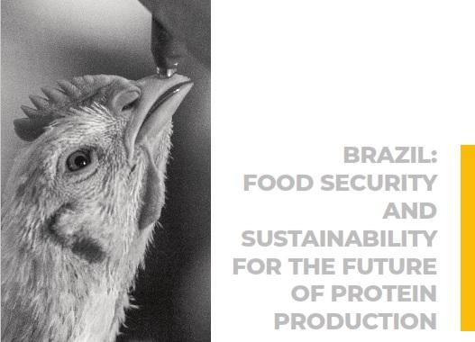 Estudo mostrou sustentabilidade da produção brasileira de aves e suínos