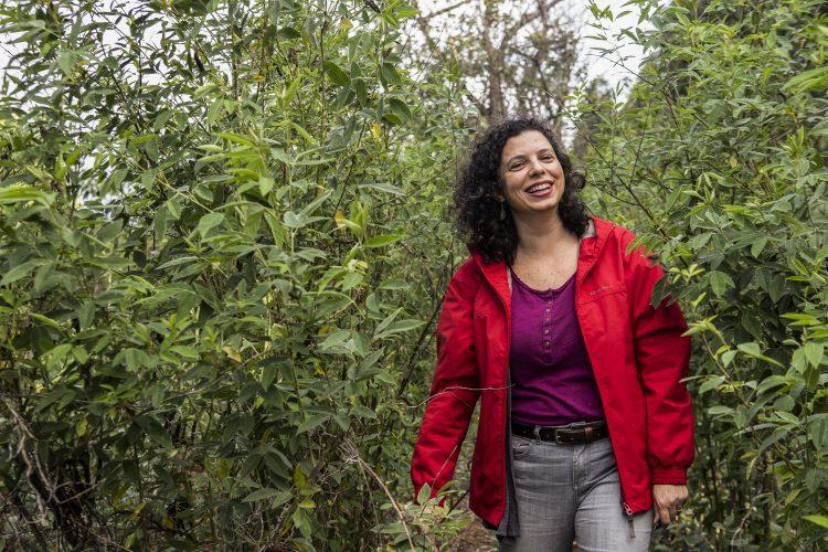 Summit Conservação Integrada promoveu debates sobre restauração ecológica