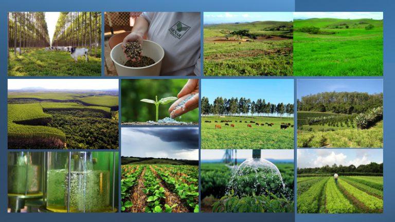 As contribuições da agropecuária para o Acordo de Paris