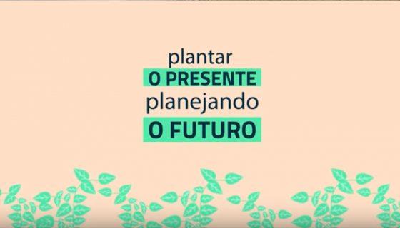 Vídeo: Plantar o presente planejando o futuro   Cerrado