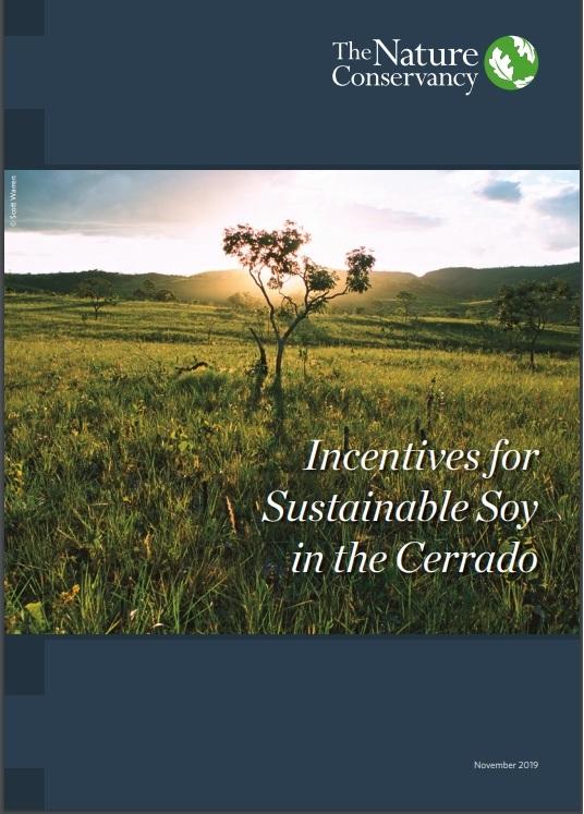 É possível cultivar a soja sem desmatar o Cerrado