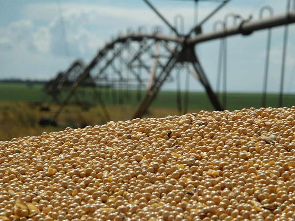 Agroicone entrega propostas para o Plano Safra 2020/2021