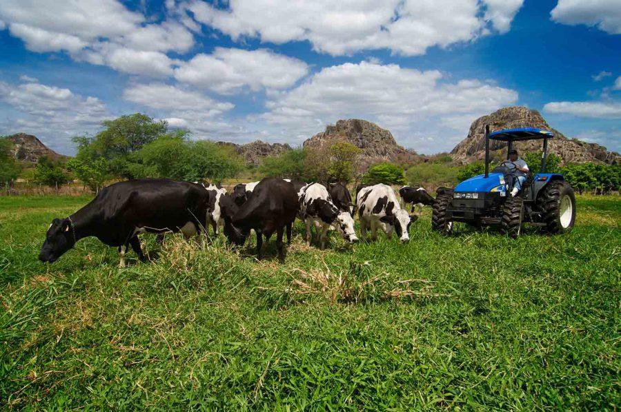 Plano Safra 2020/2021 aumentou recursos para investimentos em tecnologias rurais sustentáveis
