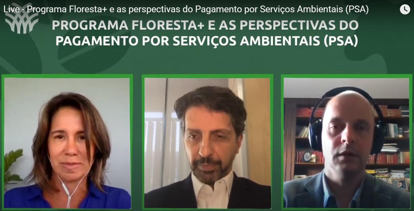 Oportunidades do Programa Floresta+ e Pagamento por Serviços Ambientais (PSA)