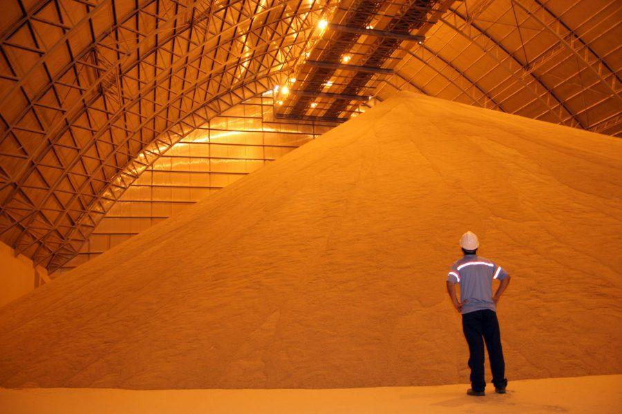 Cadeia de custódia de grãos aumentará a competitividade brasileira