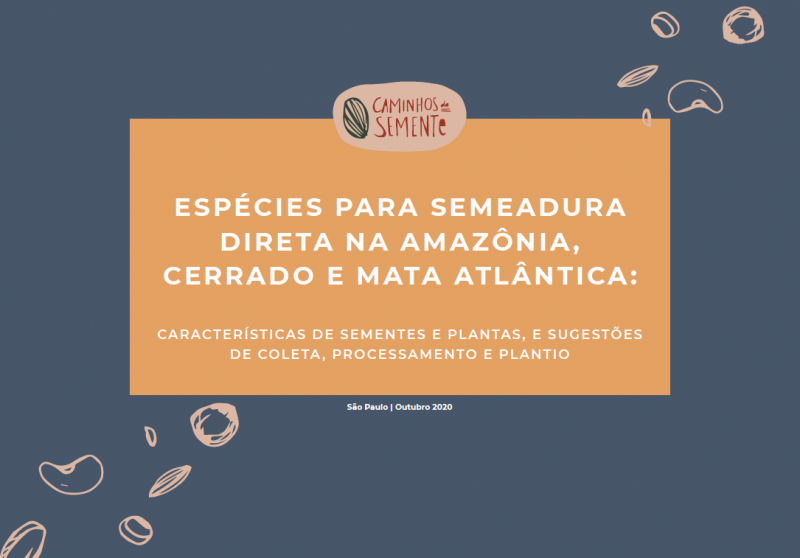 Estudo da Iniciativa Caminhos da Semente lista espécies para semeadura direta nos biomas Amazônia, Cerrado e Mata Atlântica