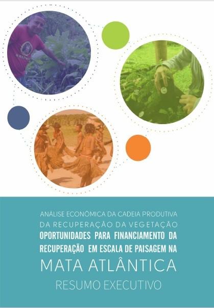 Recuperação de vegetação da Mata Atlântica pode trazer retorno financeiro quando realizada em grande escala
