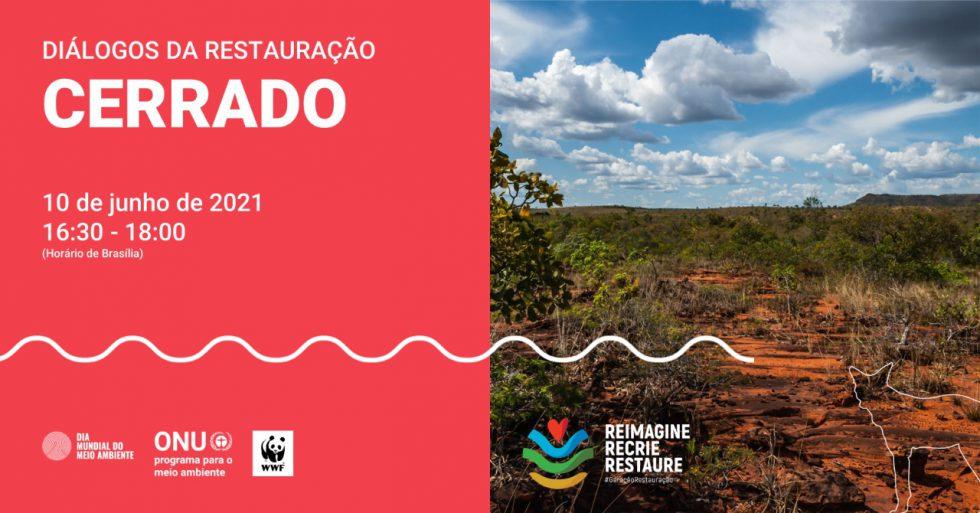 Webinar sobre Cerrado integrou lançamento da Década da Restauração